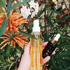 Beautycounter Focusing on chemical-free skincare and makeup (they've got 1,500 ingredients on their NO list), this LA-based brand has amassed a loyal following online. Their consultants host buying parties so consumers can see and try products in person. Also, Gwyneth is a fan. Photo: @goop Rosemary And Citrus Body Oil, Beautycounter $68