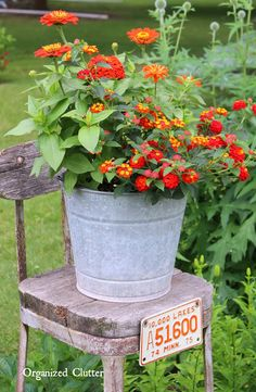 Beautiful Flowers in Junky Containers Zinnias & Lantana On A Rustic Stool Garden Junk, Garden Planters, Lawn And Garden, Fall Planters, Diy Planters, Container Flowers, Container Plants, Container Gardening, Succulent Containers