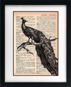 ink over old literature