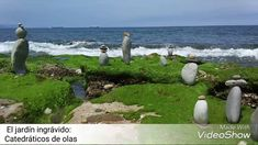 Catedráticos de olas en la playa de Azkorri