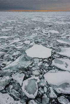 drift ice, arctic sea, sunset