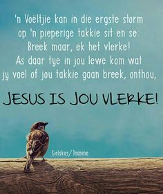 Jesus is jou Vlerke Bible Verses Quotes, Jesus Quotes, Uplifting Christian Quotes, Spiritual Inspiration Quotes, Inspiration For The Day, Mother Daughter Quotes, Afrikaanse Quotes, Morning Greetings Quotes, Bible Prayers