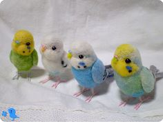 Little felted budgies <3