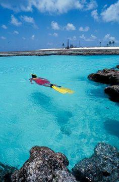UNESCO World Heritage Siite.                                Brazilian Atlantic Islands.  Atol das Rocas and Fernando de Noronha.  BRAZIL.