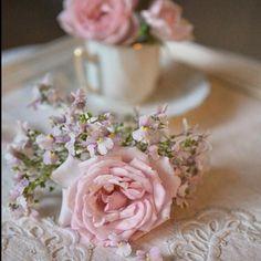 Günaydın #goodmorning #rose #roses #flowers #teacups #instagram #instalike #instamag #instamood #blumen #amazing #good  #lovely #very #nice #garden #pink #Hayırlı cumalar 🍥🌸🍥