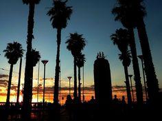 オーストラリア・アデレードのビーチタウン「グレネルグ」にて。Glenelg in Adelaide, Australia.