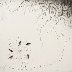 Tête à Tête ~ artist Fiona Watson - (winter birds feeding, illustration, art) Collagraph, Fun Illustration, Land Art, Land Scape, Printmaking, Illustrators, Book Art, Street Art, Sketches