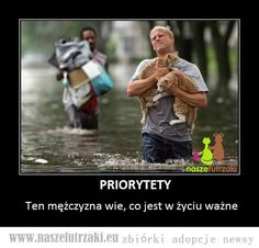Priorities first 🐈 Cat Jokes, Lovers Day, Real Hero, Cat People, Animal Memes, Cat Life, Priorities, Cute Cats, Friendship