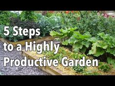 ▶ How to Plan a Highly Productive Garden - Growing your own food is a great way to save money and eat more healthily so it's important to make the most of the space you have available. YouTube