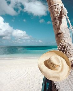 #.     -   http://vacationtravelogue.com Best Search Engine For Hotels-Flights Bookings   - http://wp.me/p291tj-9w