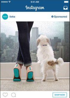 Instagram está probando ads interactivos en dispositivos iOS y compras a través de Apple Pay