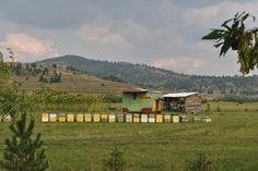 Beekeeping in Romania Beekeeping, Romania, Cabin, Mountains, House Styles, Nature, Travel, Decor, Naturaleza