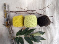 LIME. Set of natural plant dyed / hand dyed wool yarn, eco friendly yarn…