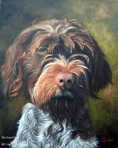 Art by Shirley Flinn Pointer Puppies, Dogs And Puppies, Doggies, German Wirehaired Pointer Puppy, Griffon Dog, Color Pencil Art, Dog Paintings, Hound Dog, Dog Boarding