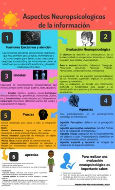 info 2 Amparo How To Create Infographics, Definitions, High Definition, Image