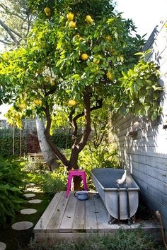 outdoor tub and lemon tree. I've always wanted a lemon tree. Outdoor Bathtub, Outdoor Bathrooms, Outdoor Showers, Garden Bathtub, Outdoor Spaces, Outdoor Living, Outdoor Decor, Rustic Outdoor, Citrus Trees