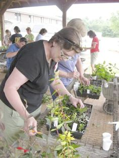 Cooperative Extension Rowan County Master Gardeners are planning a Plant Propagation Workshop for July 1.