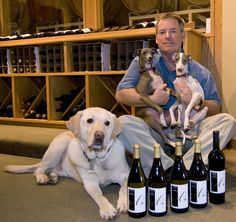 New Website for Avanti Winery Launches #digitalmarketing #smallbusiness #wine