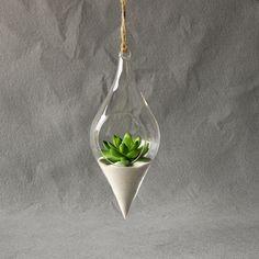 Pendurado Vaso De Vidro Pendurado Terrário Hidropônico Planta Flor Limpar Recipiente Interior Pendurado Vaso Decoração Da Sua Casa