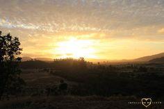 #Sunburn #Mountains #Fields #Casablanca #Chile #Roadtrip #Nature #Landscape #Sundset #Sky #Impulse #Earth #Miss #Miri #Travel #Photography