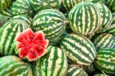 Wassermelonen - der optimale Sommersnack...