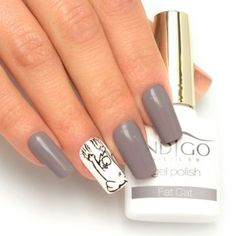 Fat Cat Gel Polish by Paulina Walaszczyk Indigo Educator - Follow us on…