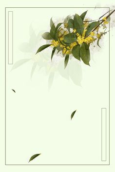 Autumn plant poster background, Chinese Style, Fresh, Literary Poster, Background image