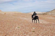 Las cabalgatas por la estepa patagónica constituyen uno de los episodios más formidables de una visita a Bahía Bustamante.