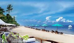 Di lokasi Objek Wisata Pantai Sanur Denpasar, pengunjung bisa melihat Matahari terbit dengan berenang di pantai. Sebagian kawasan pantai ini