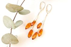 Long gold color baltic amber earrings, elegant royal teardrop amber earrings, unique natural amber jewelry, amber earrings,gift for her 4.7g by AmberDesign8 on Etsy
