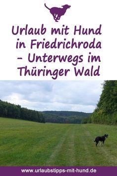 Hundefreundliche Ferienwohnung und schöne Ausflüge rund um Friedrichroda, Urlaub mit Hund in Deutschland im Thüringer Wald