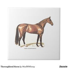 Thoroughbred Horse Ceramic Tile by WoofNWhinny* #Thoroughbred #horse #equestrian #giftidea #horselover