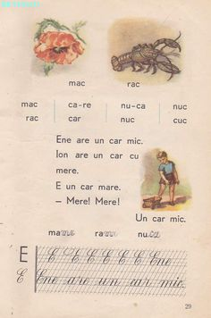 Vintage School, Kids Education, Book Illustration, Nostalgia, Language, Activities, Learning, Books, Literatura