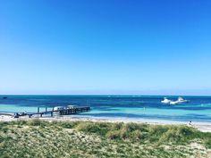 #rottnestisland #rottnest #wa #australia #westernaustralia #beauty #summer #beach #perth #seeaustralia by missdu_pont http://ift.tt/1L5GqLp