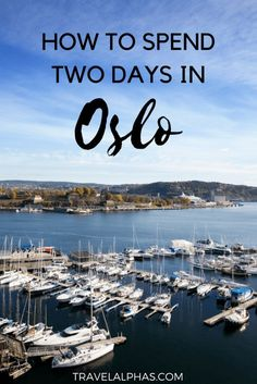 Are you stopping in Oslo during your trip to Scandinavia? This article will be your guide to a perfect two days in Oslo Norway! Hotels In Oslo, Jotunheimen National Park, Norway Oslo, Norway Travel, Norway Roadtrip, Sweden Travel, Visit Norway, Visit Oslo, Cheap Cruises
