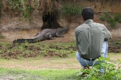 Getting intimate with on the Safari Holidays, Crocodiles, Camps, Tanzania, Lodges, Garden Sculpture, National Parks, Africa, Walking