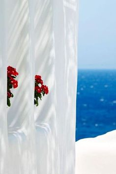 Summer in Mykonos, Greece