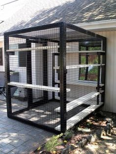 Cats Toys Ideas - - Ideal toys for small cats Outdoor Cat Enclosure, Diy Cat Enclosure, Pet Enclosures, Reptile Enclosure, Image Chat, Cat Cages, Cat Run, Cat Towers, Cat Playground