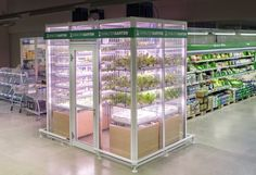 infarm, berlin, germany, vertical garden, aquaponics, herb garden,growing produce in supermarket, growing produce in grocery stores http://inhabitat.com/berlin-grocery-reimagines-the-future-of-produce-departments-with-in-store-vertical-micro-farm/