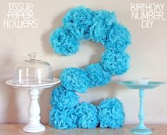 Tissue Pom Pom Paper Flowers Birthday Number DIY