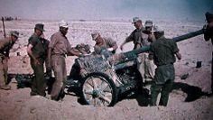 German soldiers (Afrika Korps ) moving-Pak 40 anti-tank gun, 1942.