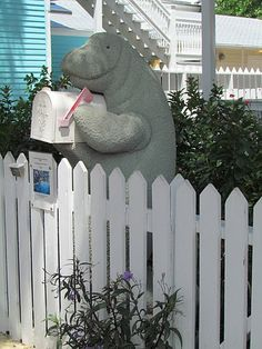 Manatee mailbox I would love to have one...however I just do not think it would work in GA LOL