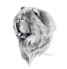 9433f04b83a CHOW CHOW Dog Art Print by Artist DJ Rogers  chowchowdog Imagens  Inspiradoras