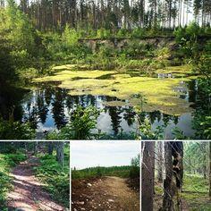 Polkujuoksua #vanuvuori luonnonsuojelualueella. Upeat jyrkät nousut. Kannattaa poiketa.