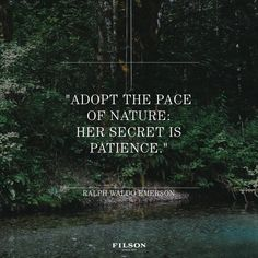 Ralph Waldo Emerson quotes to live by. Ralph Waldo Emerson quotes to live by. Ralph Waldo Emerson, Life Quotes Love, Great Quotes, Quotes To Live By, Inspirational Quotes, In The Woods Quotes, Motivational, Awesome Quotes, Change Quotes