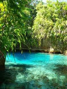 Enchanted River, Hinatuan, Surigao del Sur, Philippines