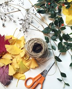 Bring some of the changing colors of the season inside. Plant Crafts, Garden Crafts, Horticulture, Natural World, Grapevine Wreath, Grape Vines, Seasons, Crafty, Colors