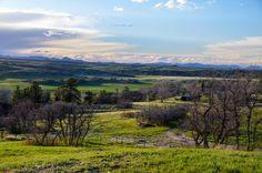 #Sedalia #Colorado #Farm #Ranch