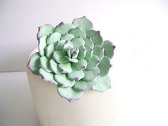 Succulent Cake Topper Clay Flower Cake Topper Clay by parsi