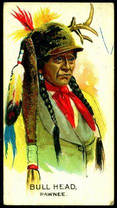 Cigarette Card - Indian Chief, Bull Head